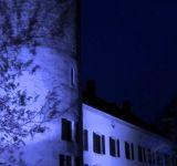 Château de La-Tour-de-Peilz abritant le Musée Suisse du Jeu